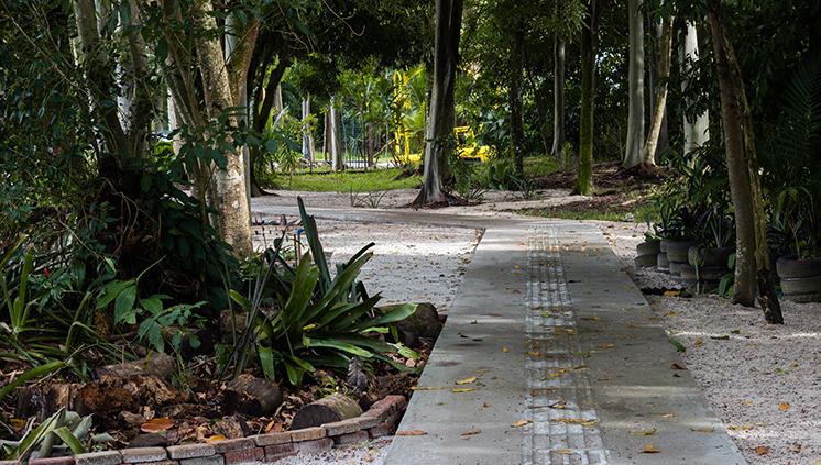 Presença de animais no Campus do Guamá gera cuidados