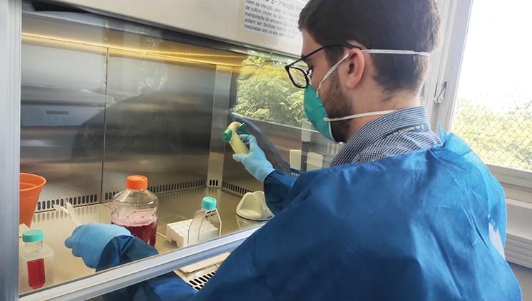 Capes divulga edital de financiamento de projetos sobre epidemias