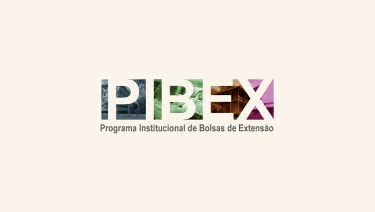 Pró-Reitoria de Extensão inicia seleção de propostas para o PIBEX 2021