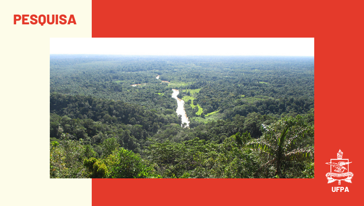 Pesquisa interinstitucional aponta trajetórias de doenças como a malária e a Covid-19 na Amazônia
